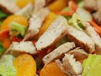 Resepi Diet Atkins PDF