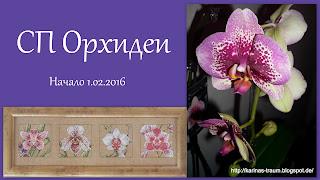 СП Орхидеи