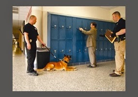 Reasonable Suspicion School Searches 10 Supreme Cour...