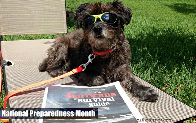 #NationalPreparednessMonth Being Prepared for Emergencies and Disasters