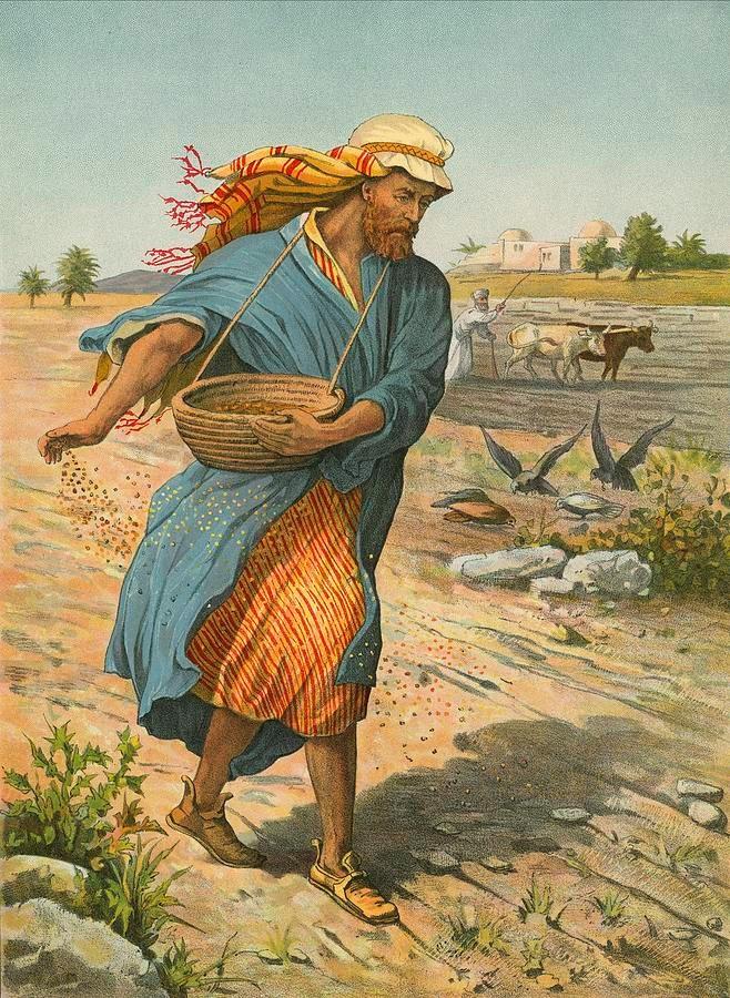 http://2.bp.blogspot.com/-35-b0FrFvBQ/U8-ircdu7LI/AAAAAAAAFDg/VhK4PM-jB9U/s1600/the-sower-sowing-the-seed-english-school.jpg