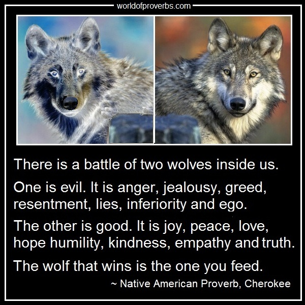 Two Wolves Native American Proverb