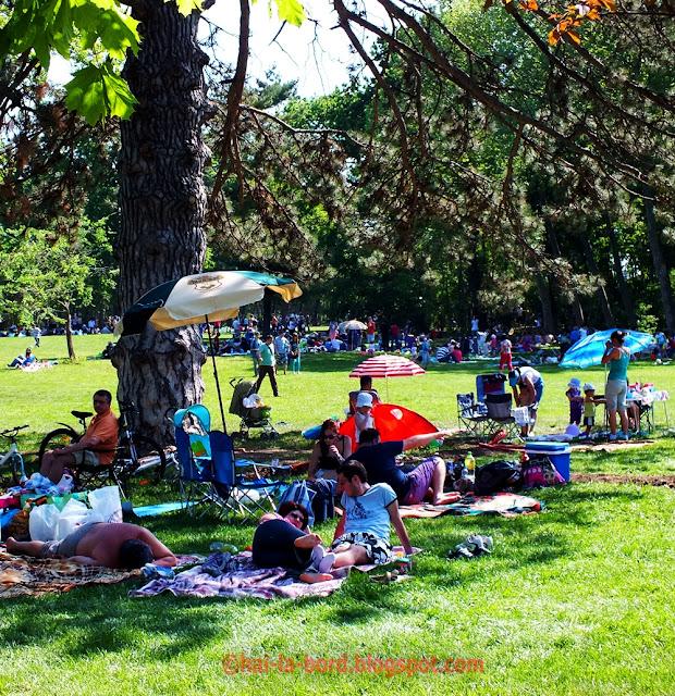 picnic 1 mai 2012 mogosoaia