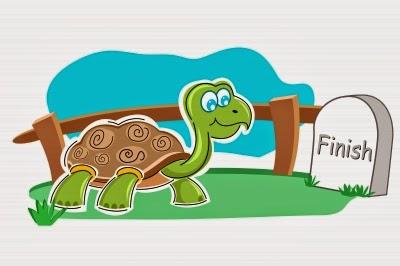 turtle crossing finish line