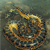 anaconda merupakan hewan reptil dari bangsa ular yang masih masuk dalam keluarga ular python.ular anaconda rata-rata berukuran besar,diatas ...