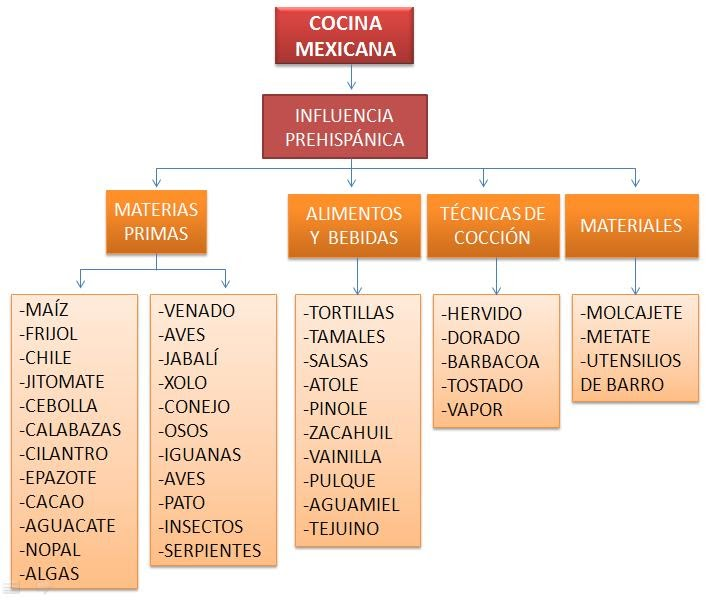 Gastronom a a libreta abierta i esquemas for Caracteristicas de la cocina molecular