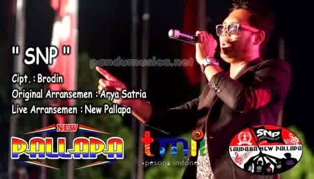 Brodin - SNP (New Pallapa Live TMII Jakarta)