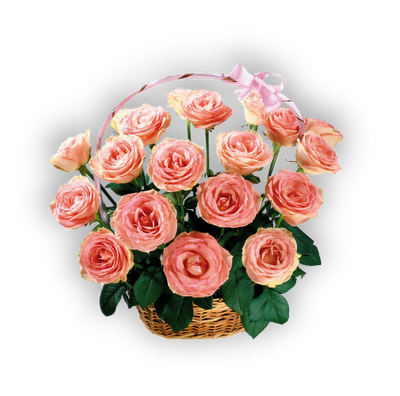 rosas imágenes png