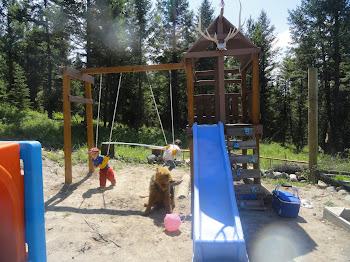 the montana playground