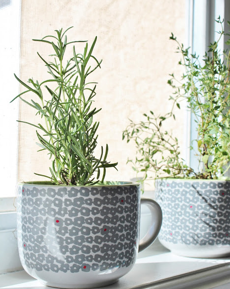 Deco hack plantar hierbas arom ticas decoraci n retro - Plantar hierbas aromaticas ...