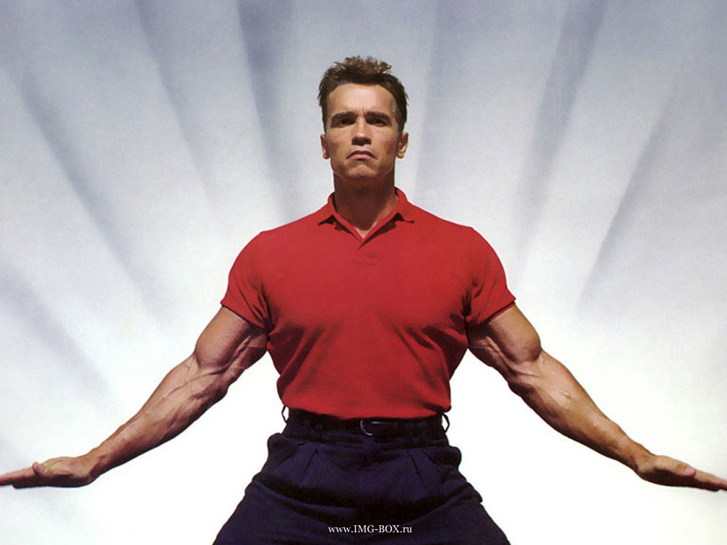 Arnold Schwarzenegger Body Building And Workout Pictures: Movies ... Arnold Schwarzenegger