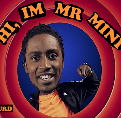 MR MINI - HI I'M MR MINI