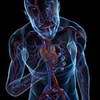 Serangan Jantung Dan Olahraga