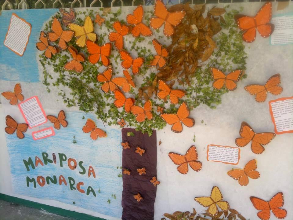 Ecolog a y medio ambiente bloque 1 marzo 2014 for Concepto de periodico mural