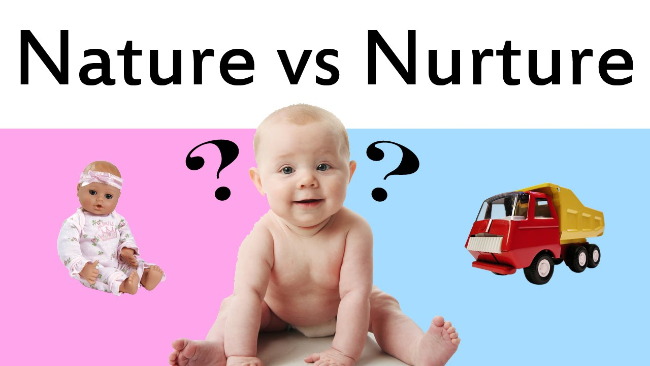 an examination of nature vs nurture The nature versus nurture debate is about the relative influence of an individual's innate attributes as opposed to the experiences from the environment one is brought up in, in determining.
