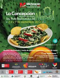 La Concepción 2012