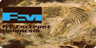 Freeport Komitmen Bantu Papua dengan Dana CSR Senilai US$ 100 Juta per Tahun