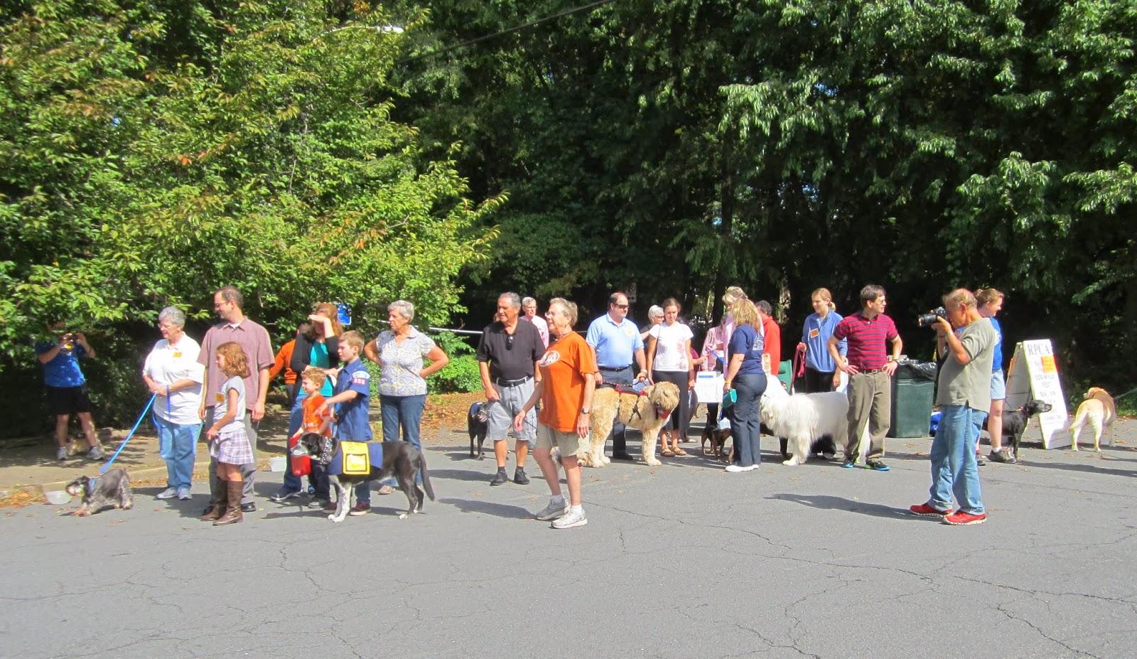 how to plan a fundraiser walk