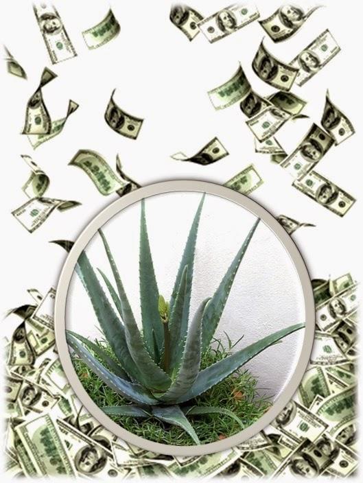 Oraciones para dinero y fortuna rituales y oraci n para - Como atraer la suerte ...