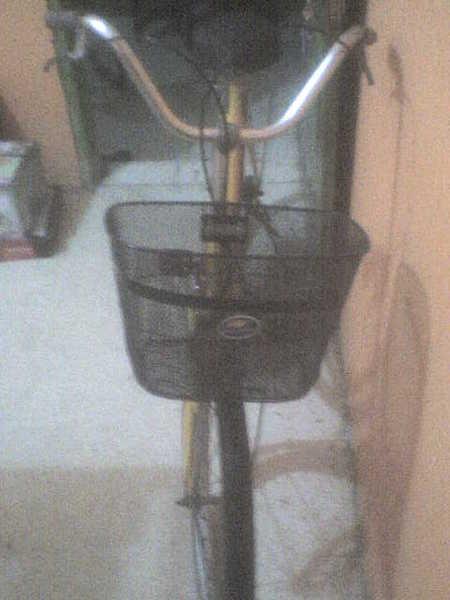 BENGKEL ONTHEL SONTOLOTIS: Sepeda Mini Sepeda Keranjang