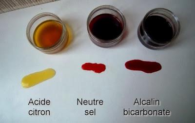 couleurs campêche