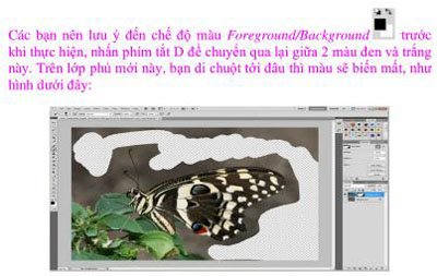 tutorial layer mask layer