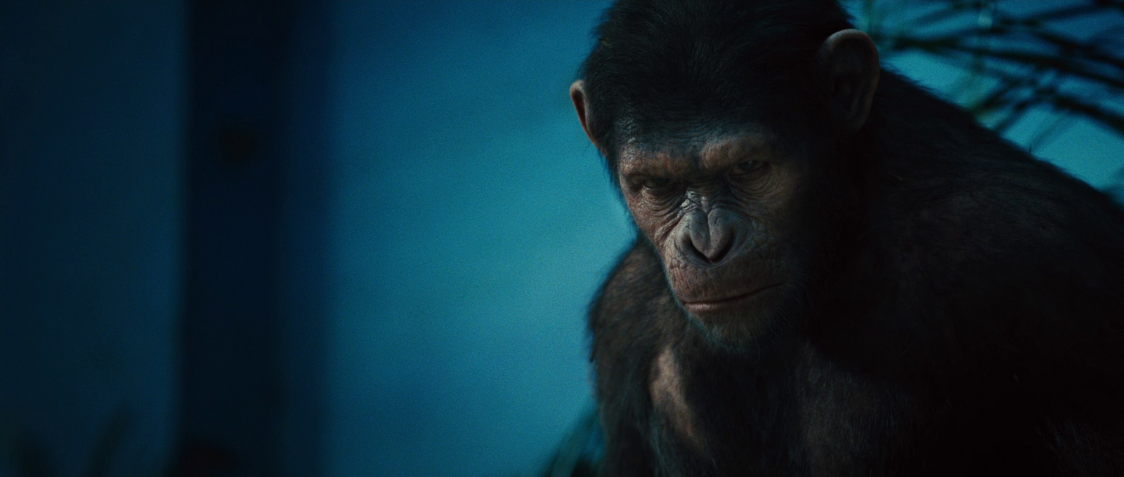 скачать планета обезьян 1968 торрент