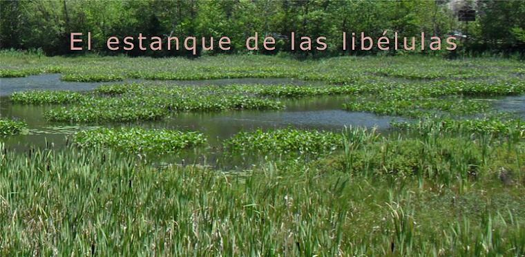 El estanque de las libélulas