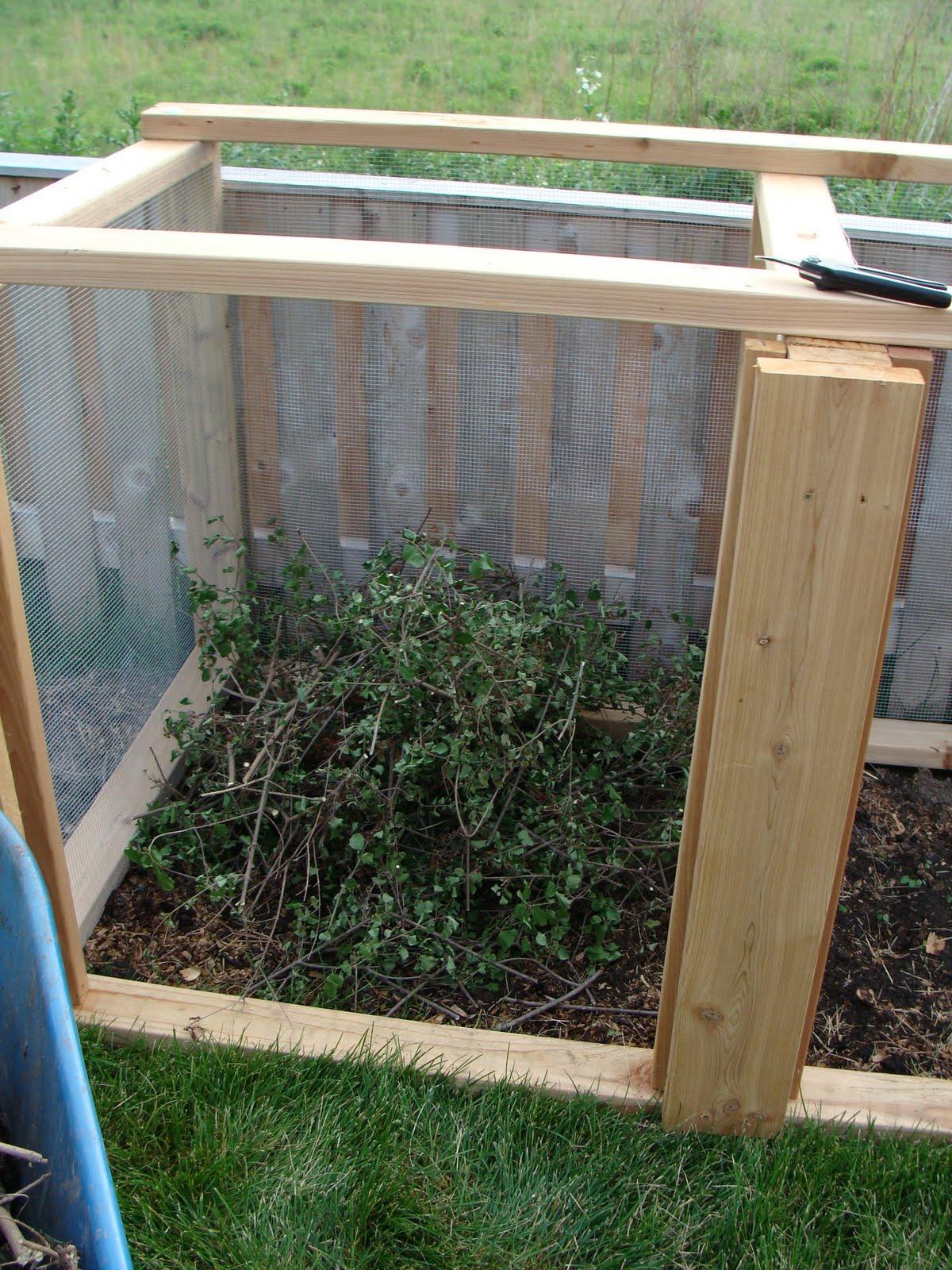 the martha initiative compost queen