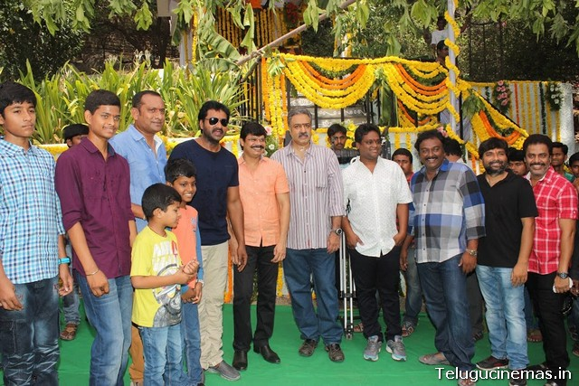 Sunil-RPA Creations New Movie launch PhotosSunil-RPA Creations New Movie launch Photos,Sunil New Movie Launch Photos,Sunil movie news, Sunil new film ,Telugucinemas.in  Sunil