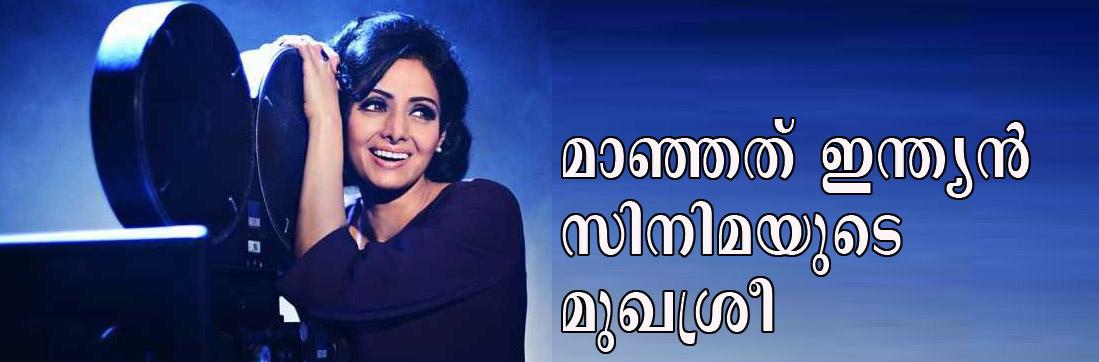 Tribute to Actress Sridevi