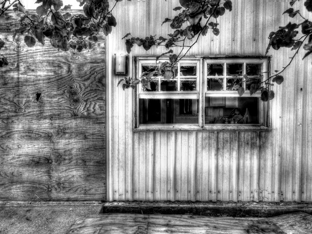 Siding and plywood Black and White