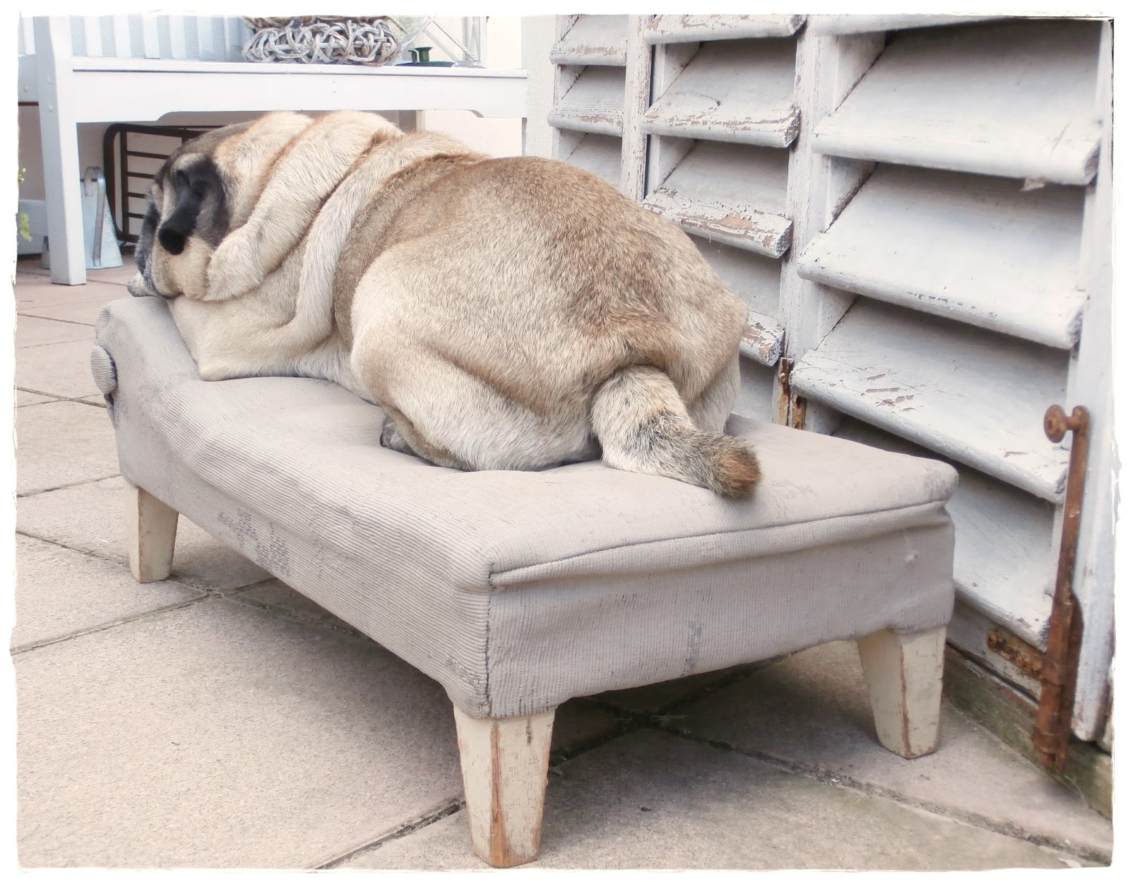 Chaiselongue landhaus  Shabby Landhaus: Eine Chaiselongue.......