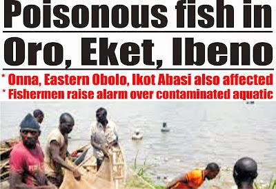 Poisonous fish in Oro, Eket, Ibeno *Onna, Eastern Obolo, Ikot Abasi also affected