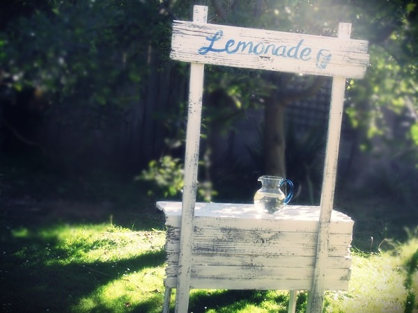 Great fun etc how to build a lemonade stand for Rustic lemonade stand