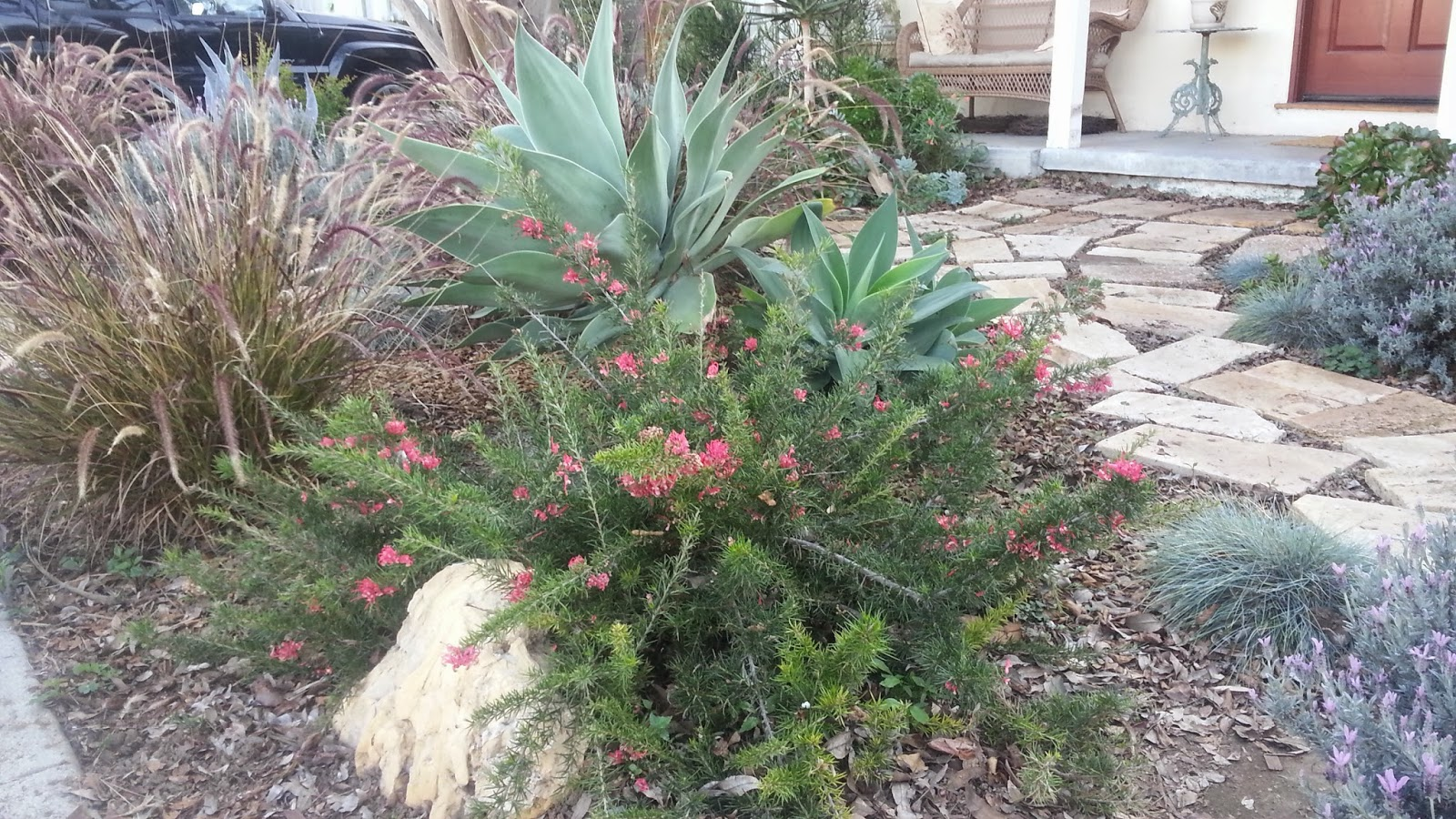 mar vista green garden showcase 3769 greenwood avenue cluster 5d