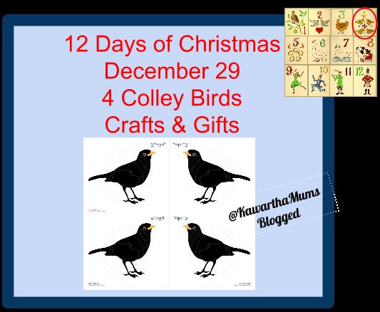image Kawartha Lakes Mums 12 Days of Christmas - 4 Colley Birds