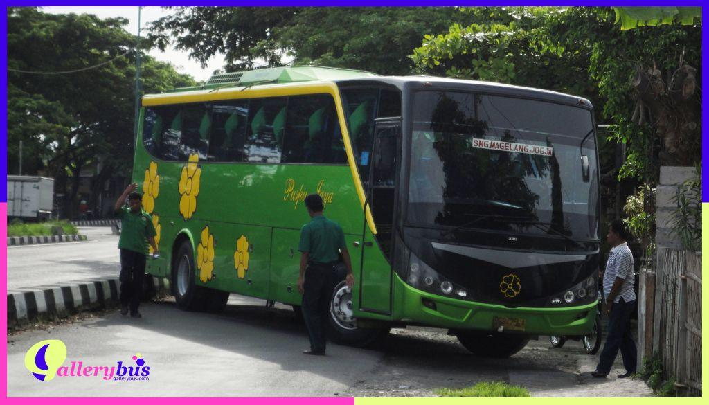 PO Puspa Jaya - Comfort by Laksana | Mercedes-Benz Bus