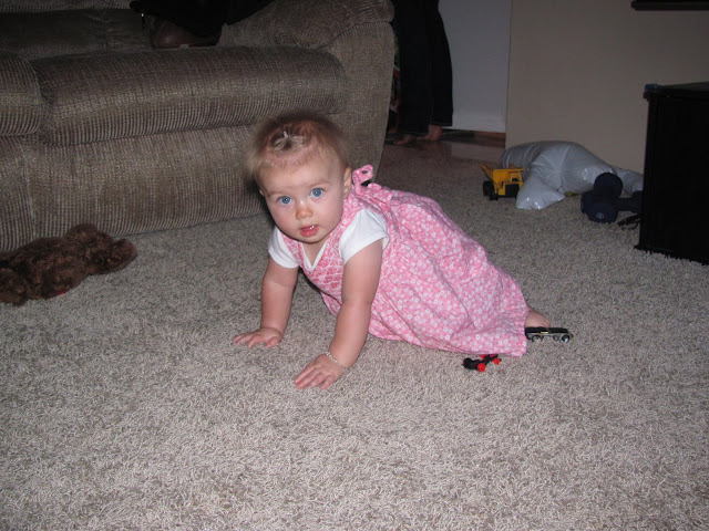 Crawling all over the place!