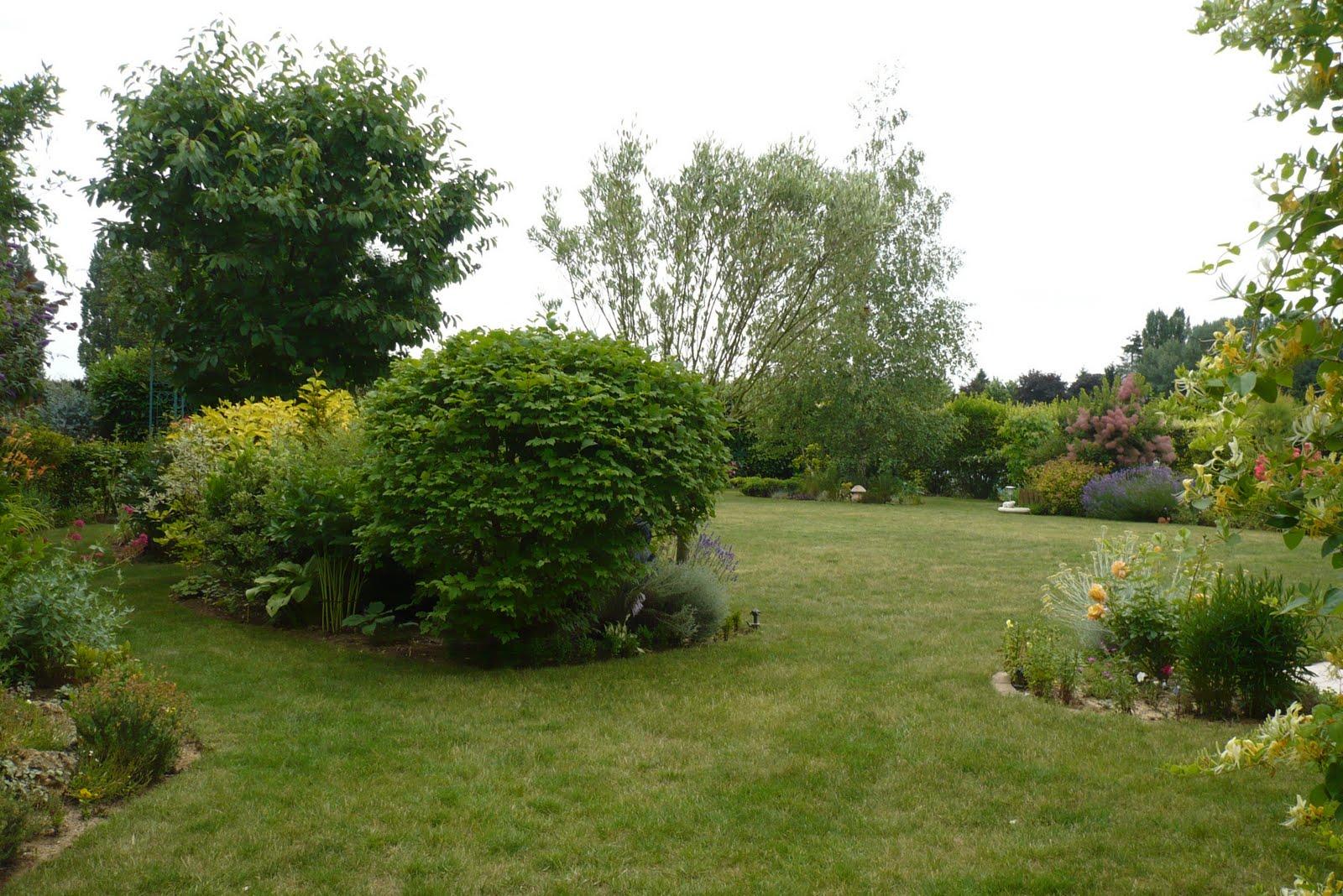 Le jardin de pacalou l olivier for Jardin olivier