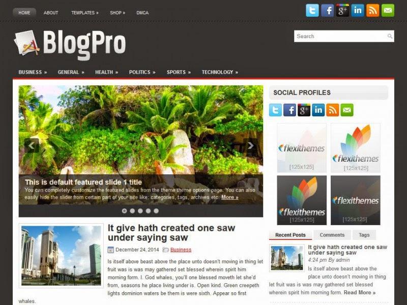 BlogPro - Free Wordpress Theme