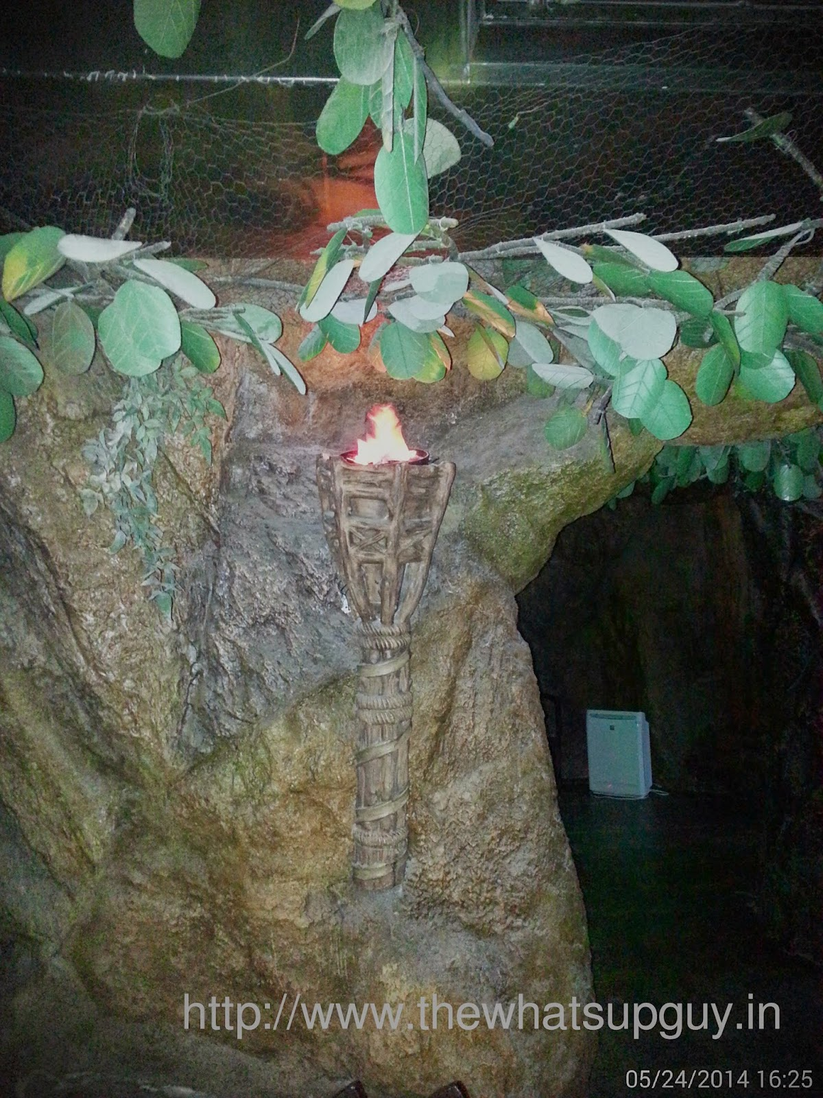 Torch In Serengeti Madiwala Bangalore