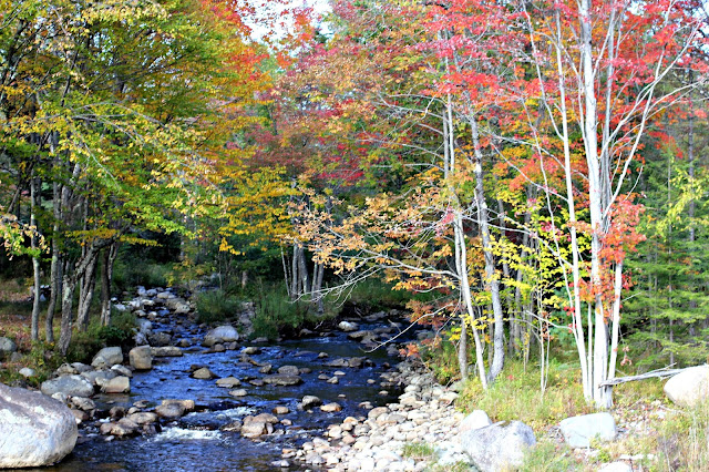 Fall foliage in the Adirondacks-www.goldenboysandme.com
