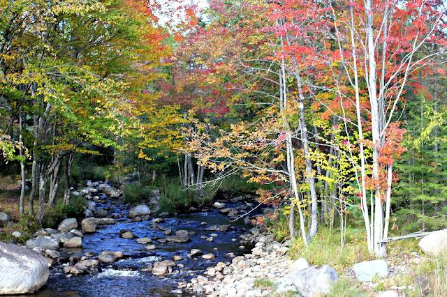 Fall foliage in the Adirondacks-www.goldenboysandme.com