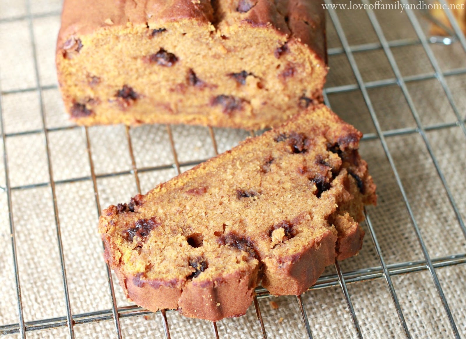 Chocolate Chip Pumpkin Bread - Love of Family & Home