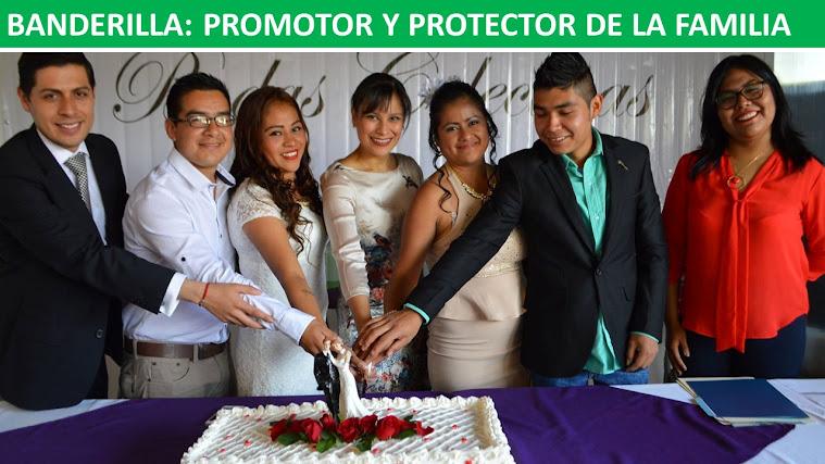 BANDERILLA: PROMOTOR Y PROTECTOR DE LA FAMILIA