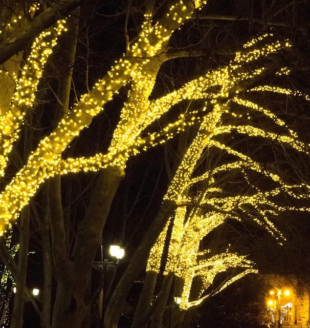 празднование нового года 2016 в севастополе
