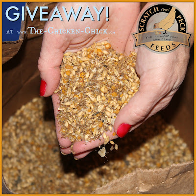 Scratch & Peck Feeds Naturally Free Organic, Non-GMO layer feed GIVEAWAY at www.The-Chicken-Chick.com