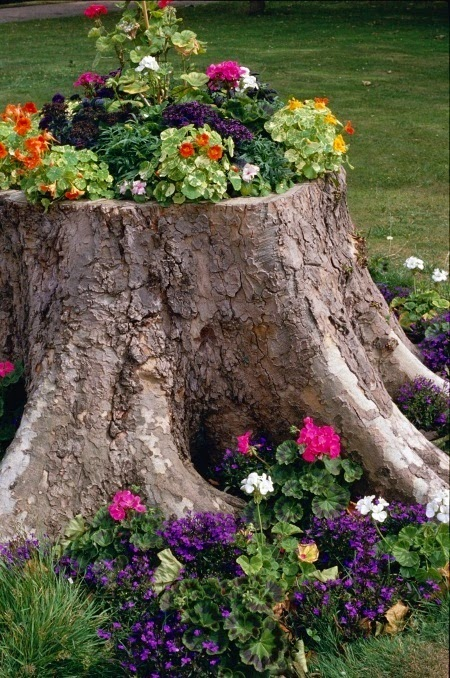 http://www.interiorholic.com/outdoors/landscaping/3-ways-to-decorate-old-tree-stumps-in-garden/