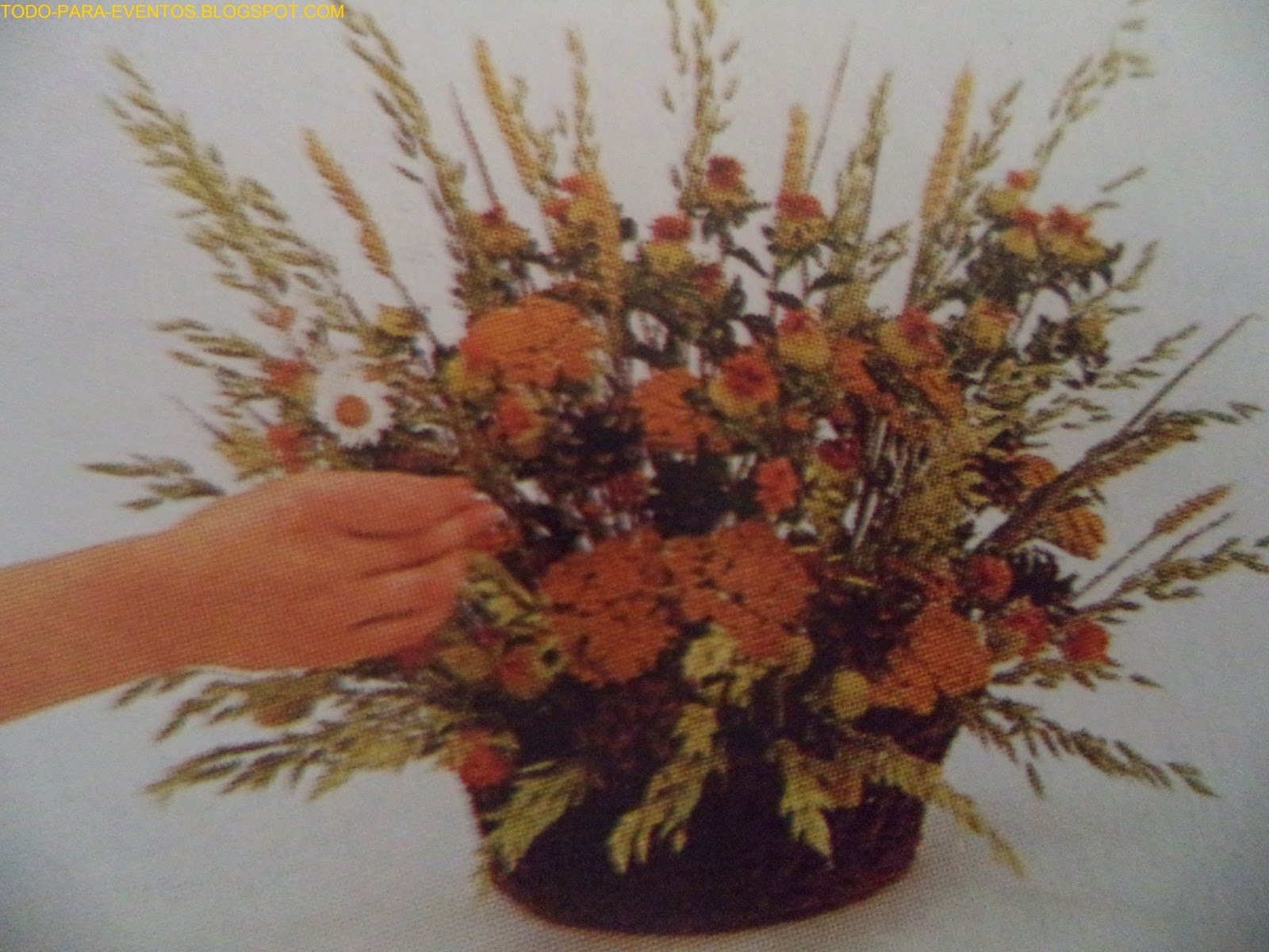 Todo para eventos arreglos de flores secas - Adornos flores secas ...